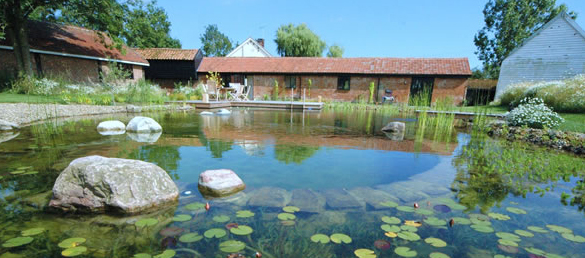 Biofiltros el sistema de depuraci n naturalfiltraci n for Construccion piscinas naturales